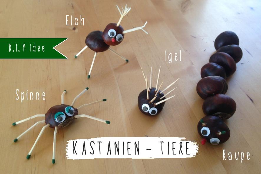 kastanientiere_pinterest