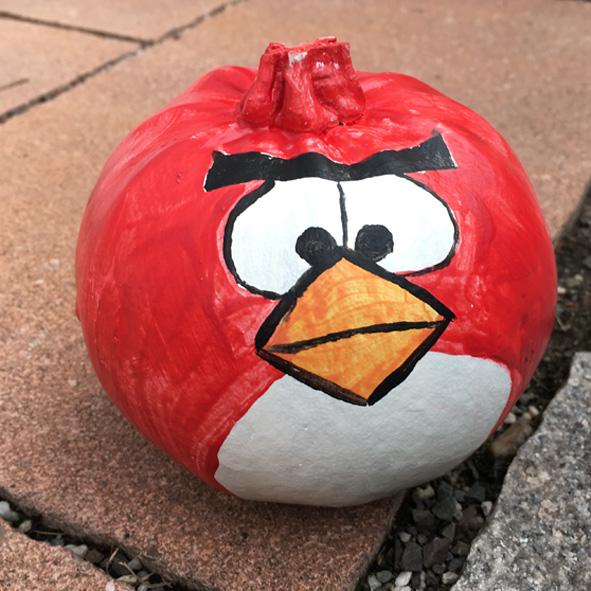 kuerbis_bemalen_idee_angry_bird