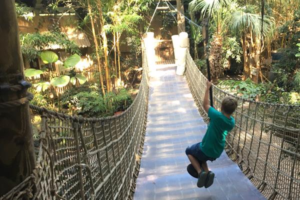 Ein Traum Für Kinder Unser Dschungel Wochenende Im Center Parc Het