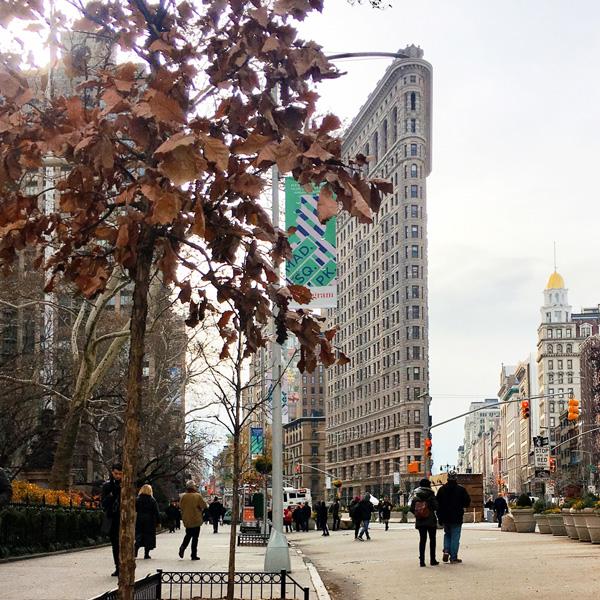 flatiron_bügeleisen_gebaeude_new_york