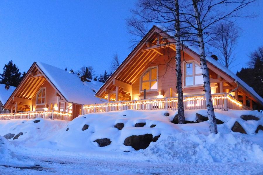 winterurlaub_harz_ferienhaus_ferienwohnung_8_personen