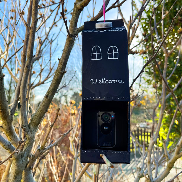 birdhouse_camera_wifi_tetrapack